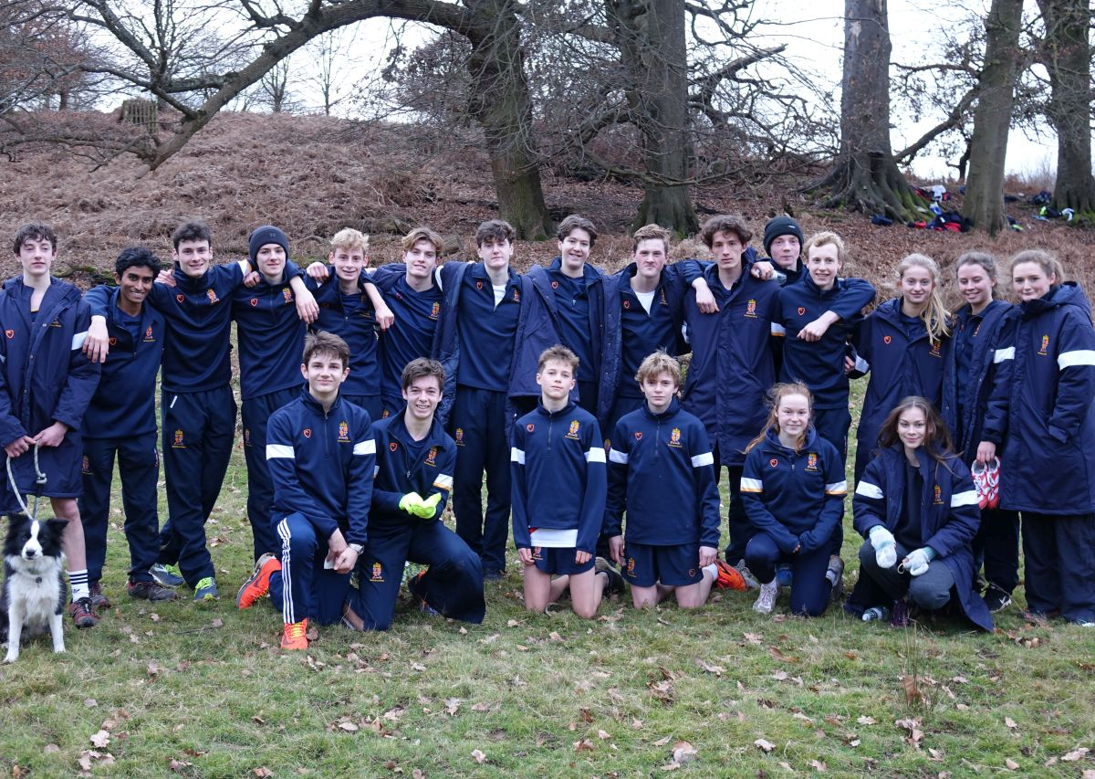 The Knole Team